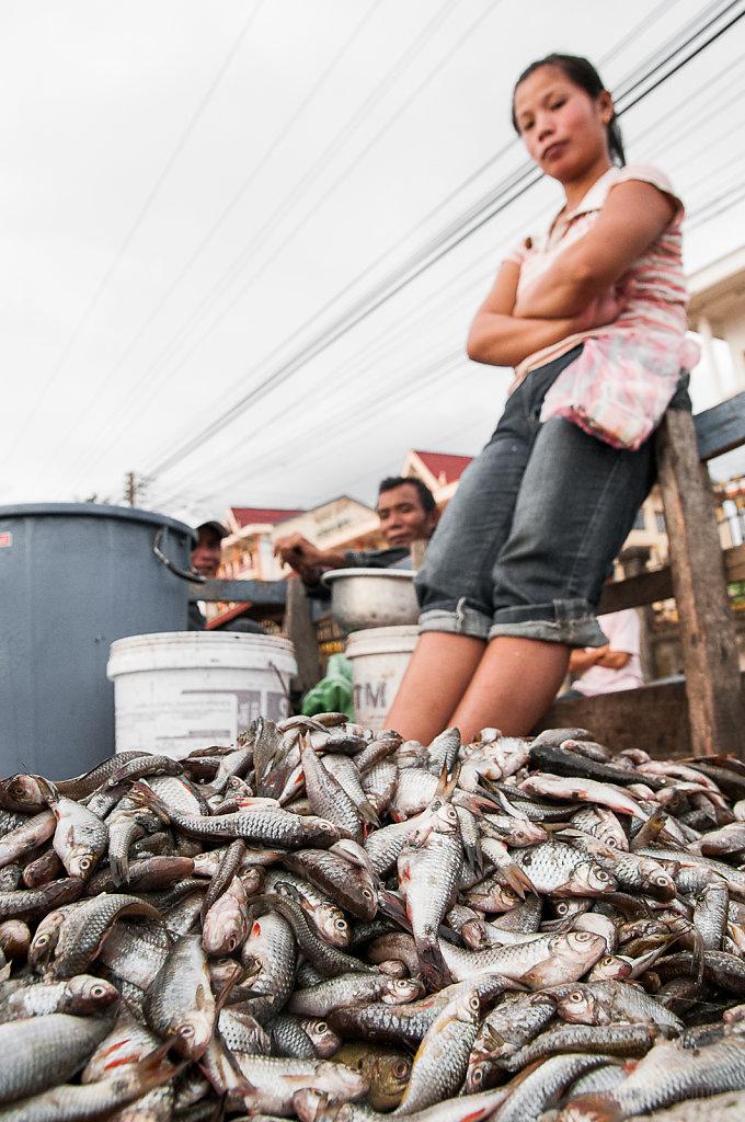 Fresh fish at Lak Sao